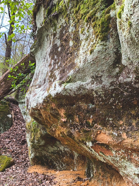 Sandstone Formation along the trail