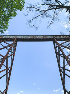 Tulip Viaduct ~ View from Below