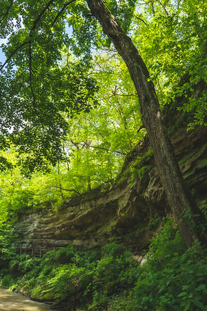 View of the Sandstone Cliffs