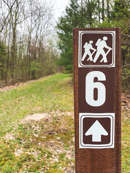 Trail 6 signage