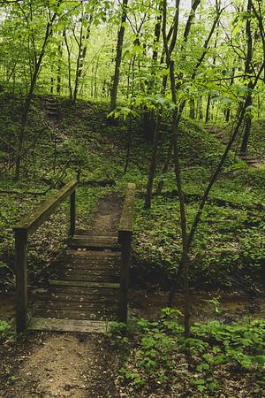 A Bridge along the South Trail