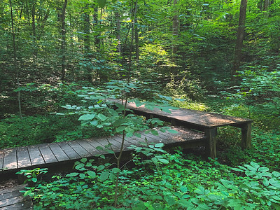 Decks along the Trail