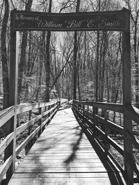 Trail #5