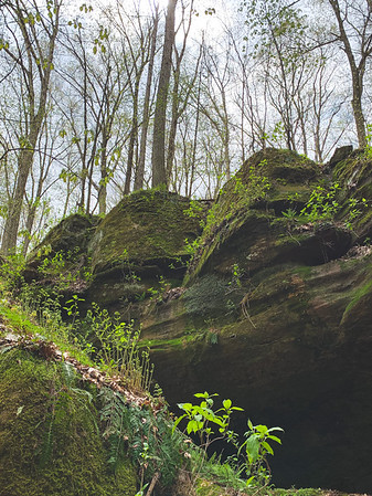 Greenery on the Rock Formations!