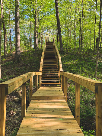 Fresh, new staircase along Trail 3