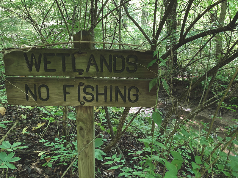 Sign to the Wetlands