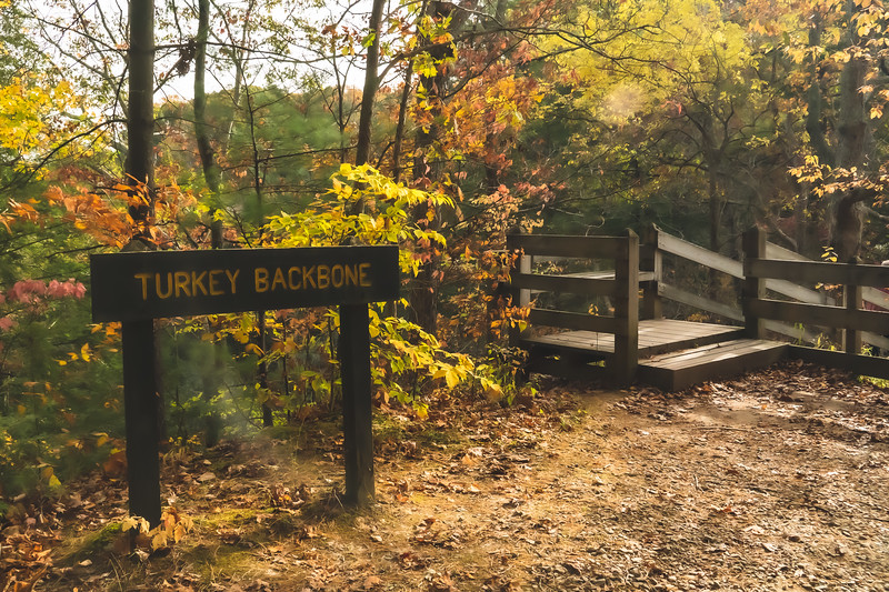 "The ""Turkey Backbone"" portion of the Trail"