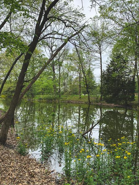 Fowler Lake Cove