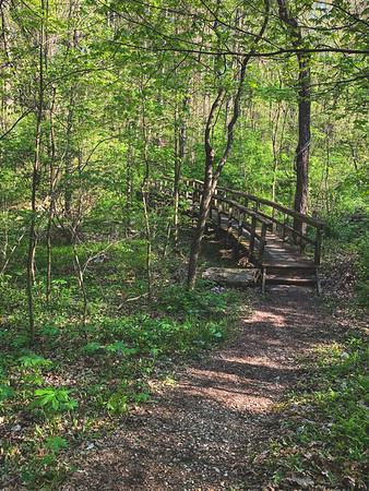 A Bridge along Trail 3