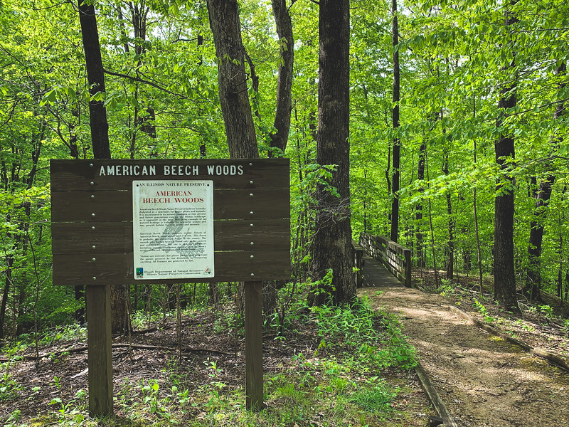 American Beech Woods Nature Preserve Sign
