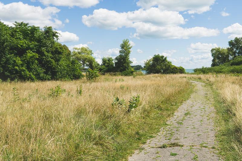 A Trail on the Isle