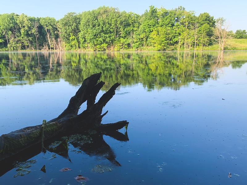 The Back Lake