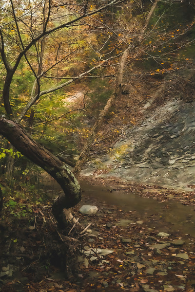 """View of """"The Slide"""" along Clifty Creek"""
