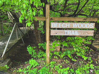 Beech Woods Trail Sign