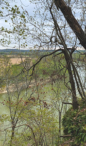 View of the White River through the trees