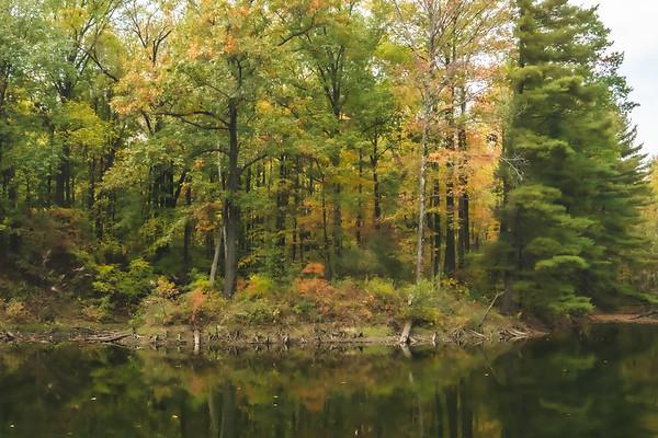 Fall Color at the Back Lake