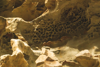 "Close-up of the ""Honeycomb Rock"""