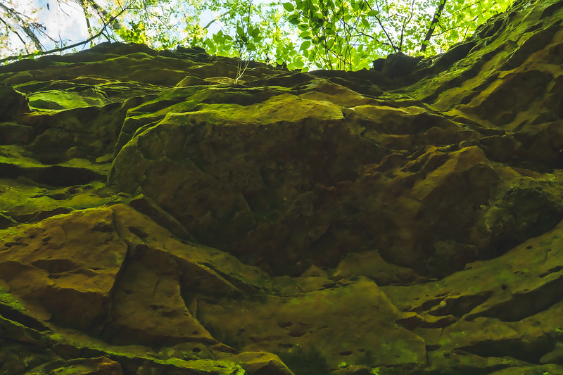 Looking up the Sandstone Cliff