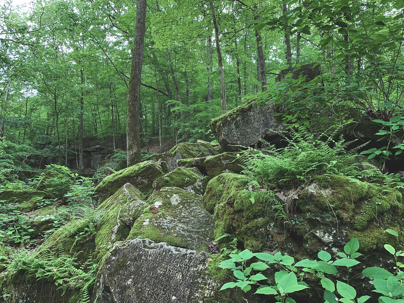 Large Boulders at the Quarry