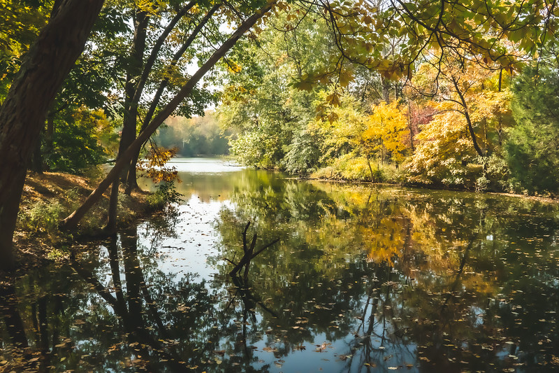 View of Fowler Lake