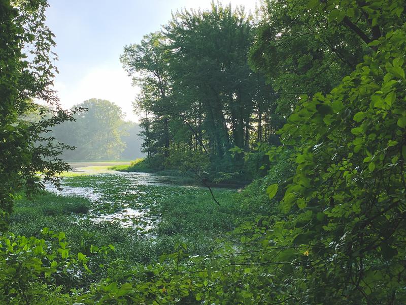 Lake Kickapoo