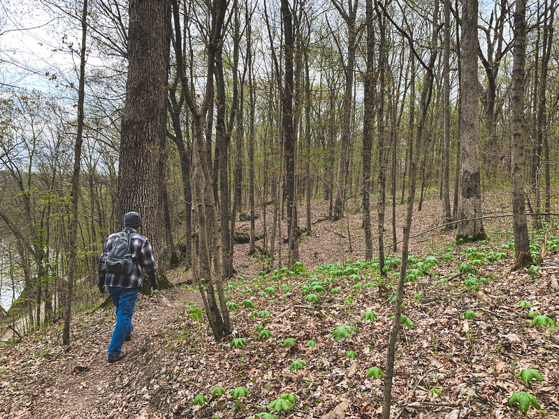 Tracy hiking along!
