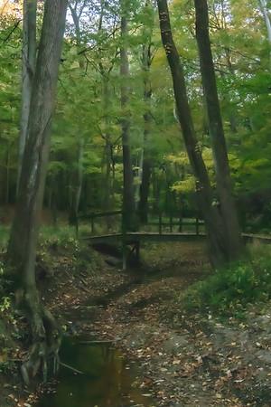 A Stream and Bridge along the Trail