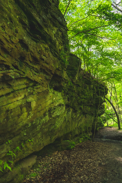 Along the Sandstone Cliff
