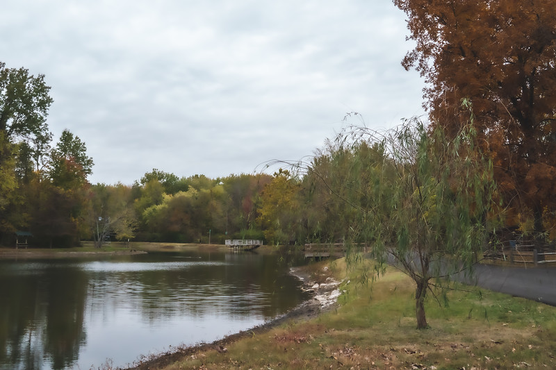 View of the Pond