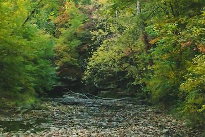 View of McCormick's Creek