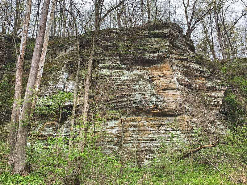 The Standstone Cliff