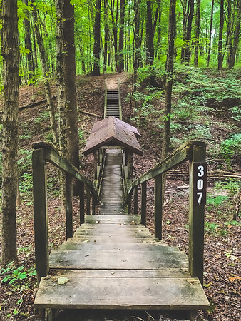 Trail 3 Staircase and Covered Boardwalk