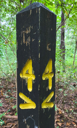 Trail 4 Sign