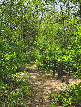 A sitting area along the trail