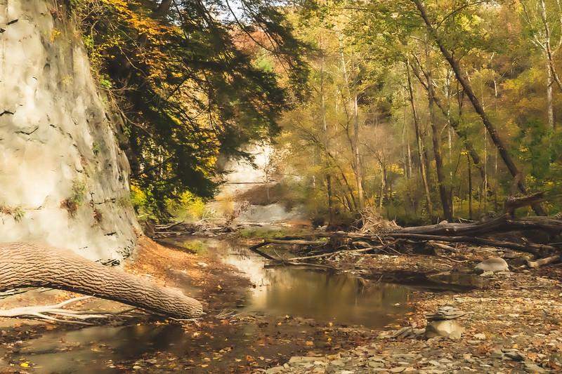 Looking down Indian Creek