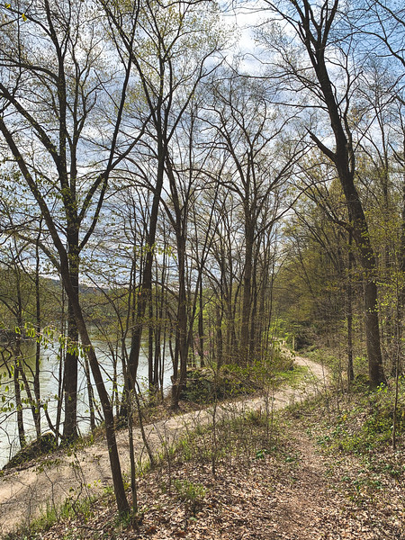View of the White River and the gravel road from the trail