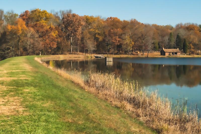Some color along Lake Lincoln