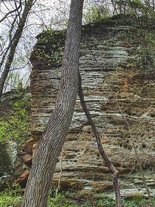 The Sandstone Cliff