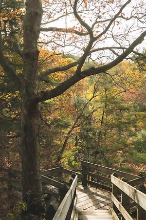 "The ""Turkey Backbone"" portion of the Trail"