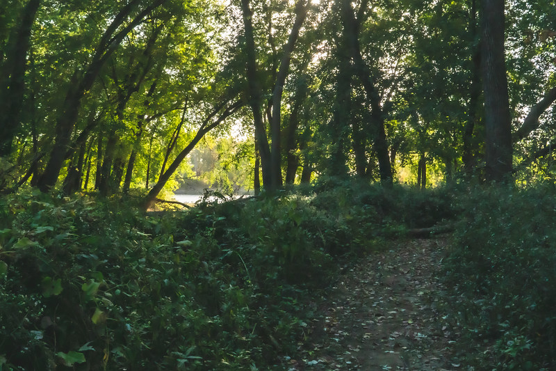 The Trail heading to the Wabash River