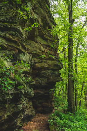 The Portland Arch Trail along the Sandstone Cliff