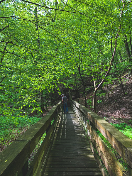 Tracy on the Bridge along the Beech Woods Trail