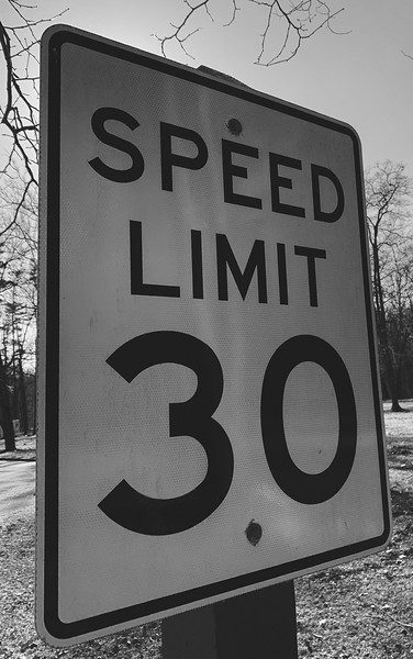 The park's speed limit (ignored by most)