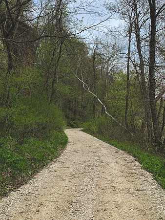 The Gravel Road which runs along the White River