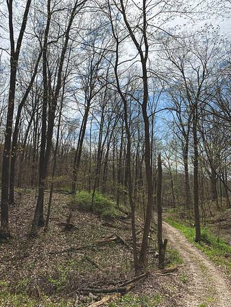 Trail 6!