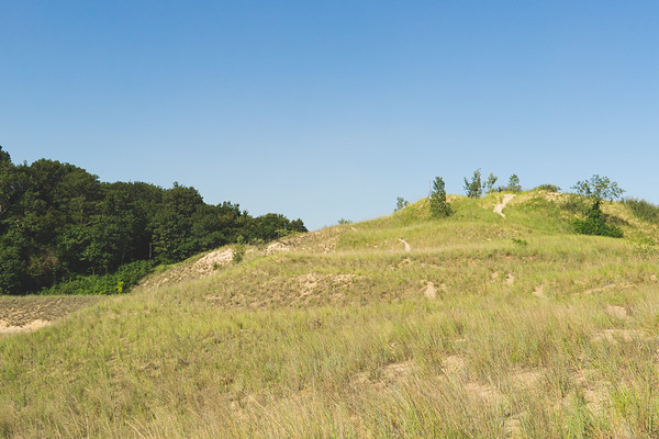 View of the Dunes at Portage Lakefront
