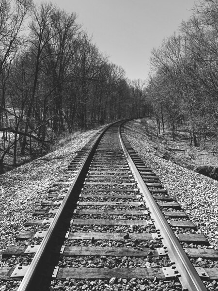 Crossing the tracks to get to Trail #8