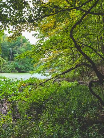 View of Lake Lenape