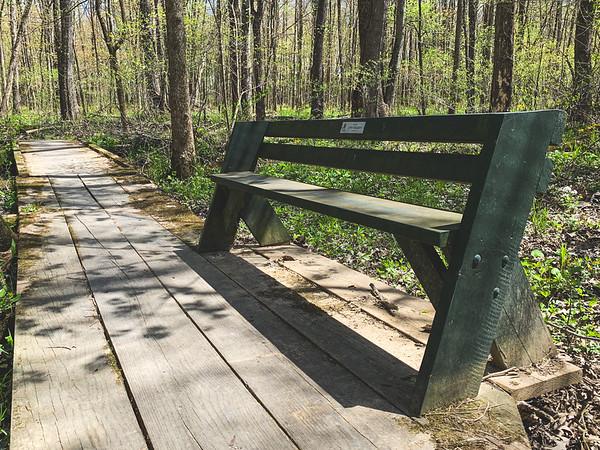 A bench along the boardwalk