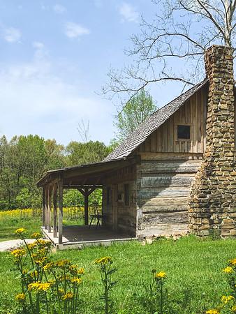 The Cochran-Plummer Log Cabin among the wildflowers